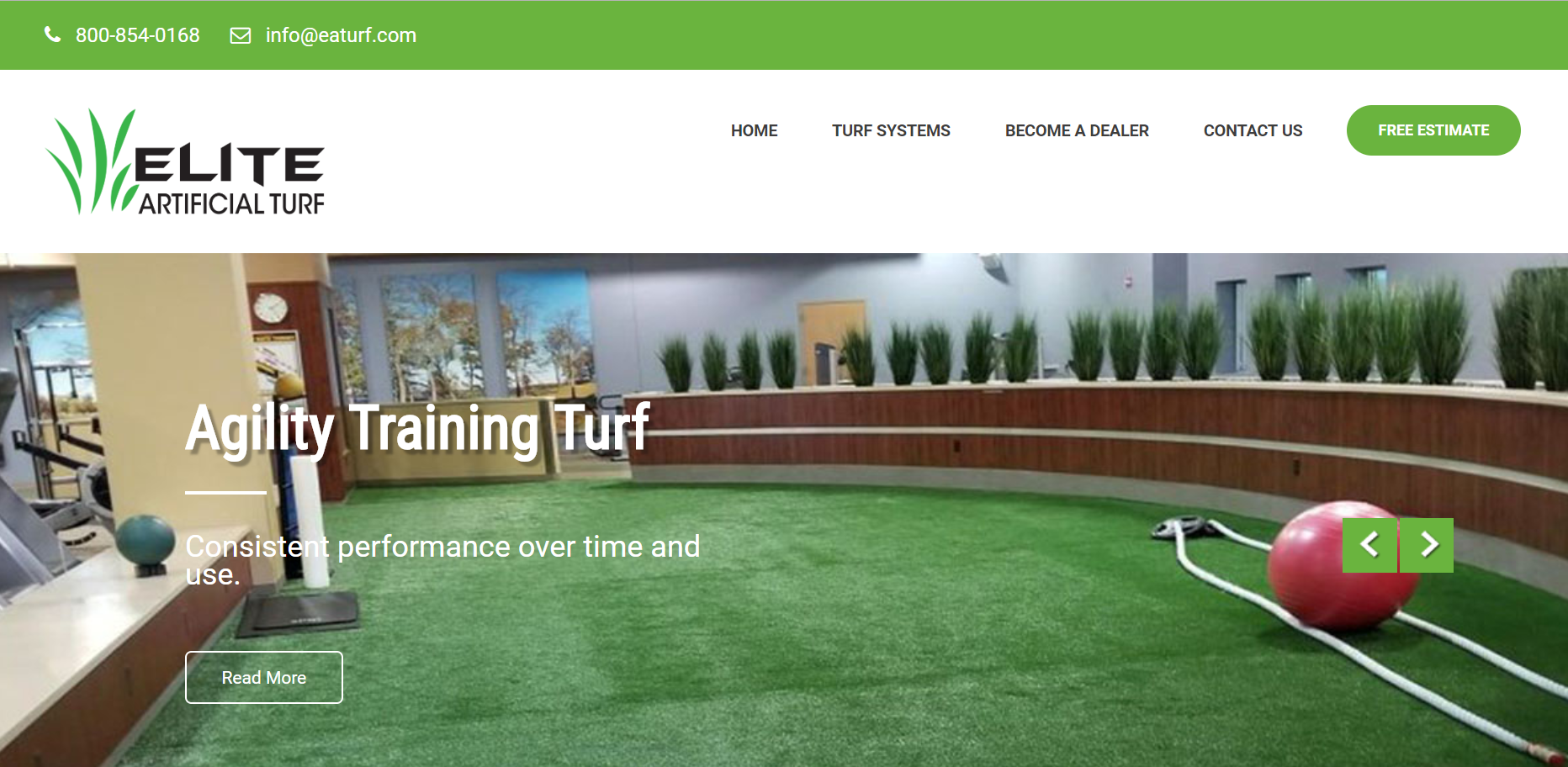 Elite Artificial Turf